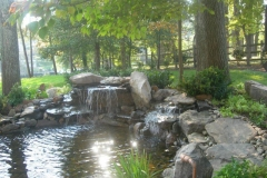 Davis-Pond-1