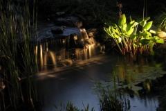 Krim-Pond-3