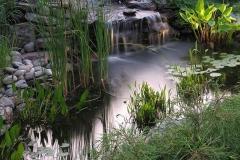 Krim-Pond-8