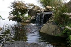 Sade-Pond-5